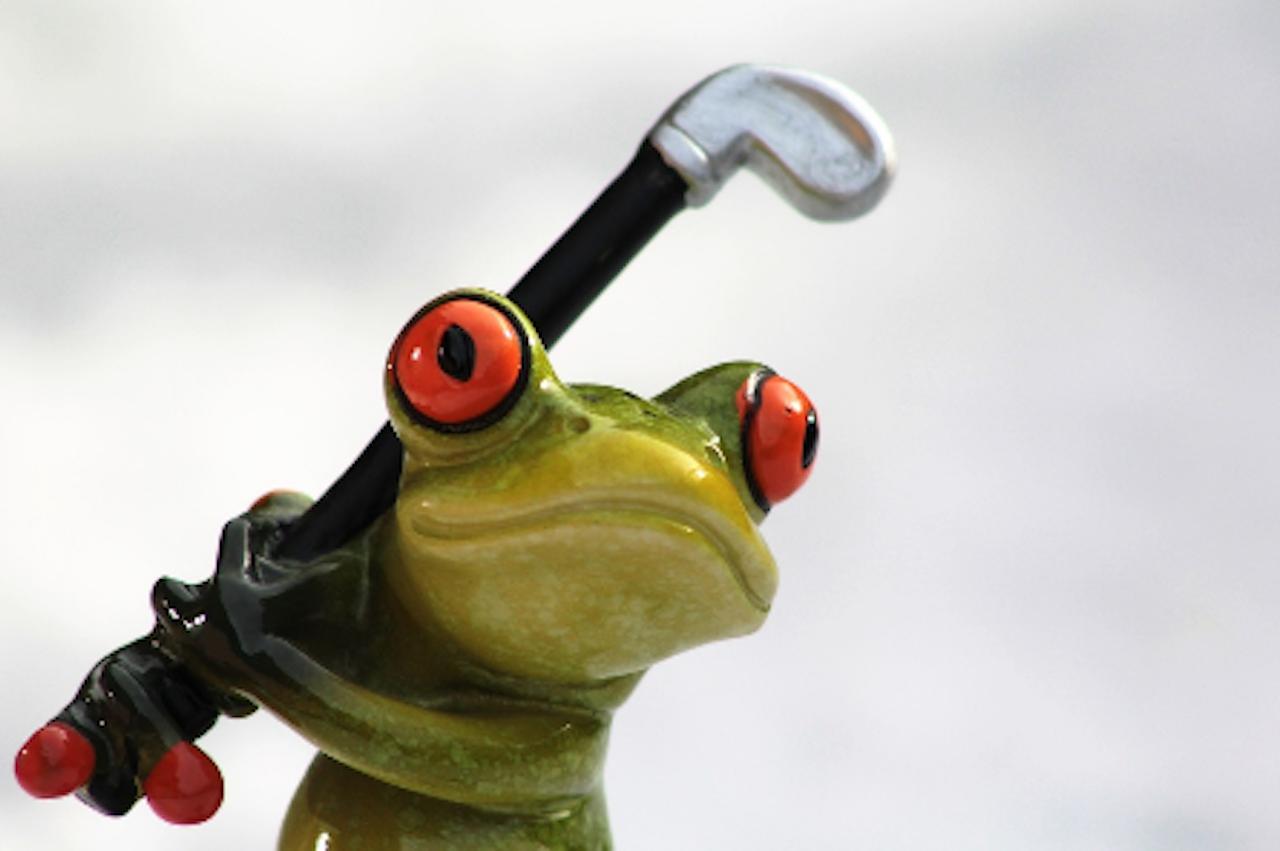Golf frog