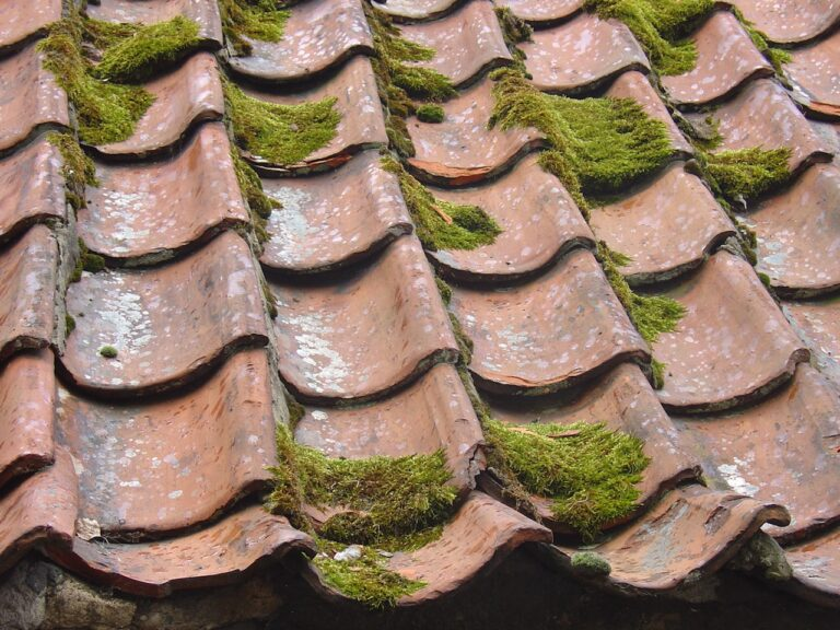 Top 5 Factors to Consider When Choosing Roof Replacement Companies
